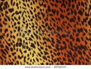 stock-photo-leopard-fur-as-background-62766337