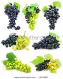 stock-photo-collection-of-ripe-fruit-grape-cluster-isolated-on-white-background-19076947