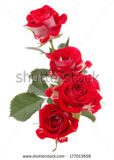 stock-photo-red-rose-flower-bouquet-isolated-on-white-background-cutout-177013658