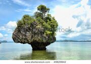 stock-photo-detail-of-thailand-island-in-the-phuket-province-summer-49829842