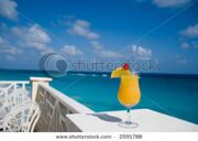 stock-photo-colorful-drink-with-lemon-at-tropical-resort-2591788